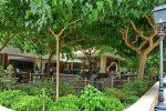 Das Restaurant am Neofytos-Kloster - Auswandern und Leben auf Zypern