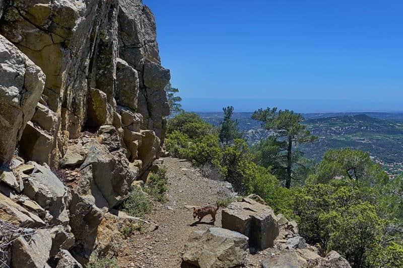 Wanderweg im Troodos-Gebirge - Auswandern und Leben auf Zypern