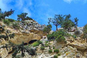 Sehenswürdigkeiten auf Zypern - die Avakas-Schlucht
