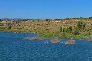 Auswandern nach Zypern - Wieder im Tal mit einem Abstecher zum Asprokremnos Dam