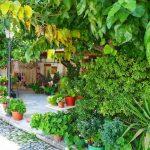 Zypern Sehenswürdigkeiten: Omodos und der Troodos Artemis Nature Trail