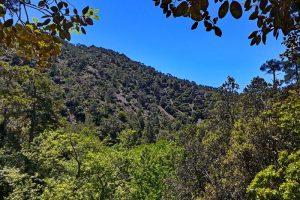 Auswandern nach Zypern - Ausblick auf die Landschaft