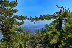 Auswandern nach Zypern - Eine Ausblick - nun vom Pouziaris Nature Trail aus