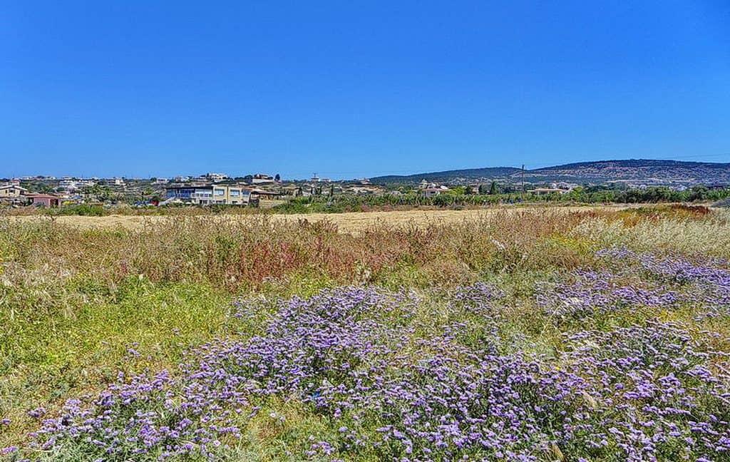 Bauland auf Zypern: Beachfront-Grundstück in exklusiver Lage im Raum Paphos zum Kauf - PFPL109