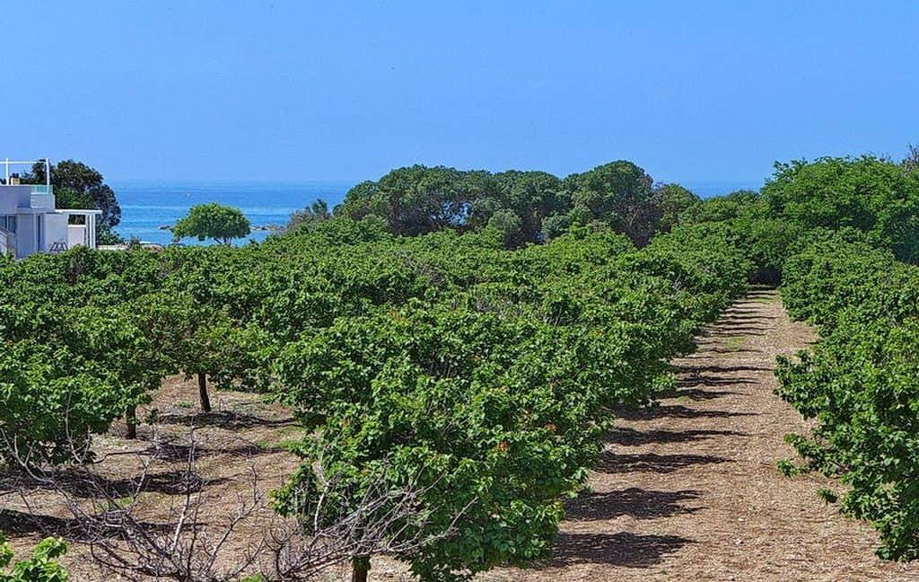 Bauland auf Zypern: Beachfront-Grundstück in exklusiver Lage im Raum Paphos zum Kauf - PFPL112