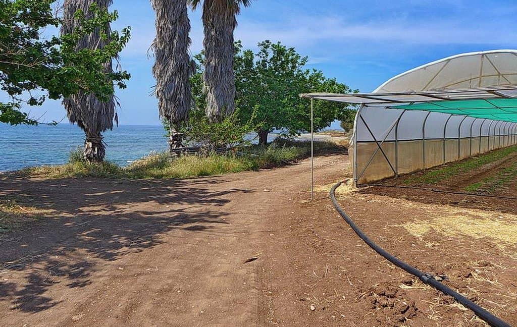 Bauland auf Zypern: Beachfront-Grundstück in exklusiver Lage im Raum Paphos zum Kauf - PFPL1155