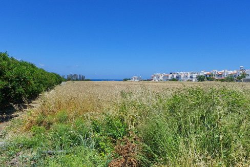 Bauland auf Zypern: Beachfront-Grundstück in exklusiver Lage im Raum Paphos zum Kauf - PFPL117