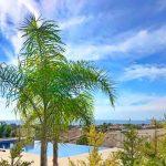 Immobilie zum Kauf auf Zypern: Zypern-Bungalow mit Privatpool in Peyia - PFSB225